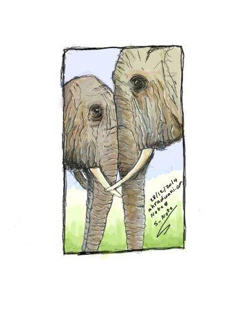 Elephant_20141228_(1)_01