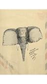 Elephant_20150105_(2)_1
