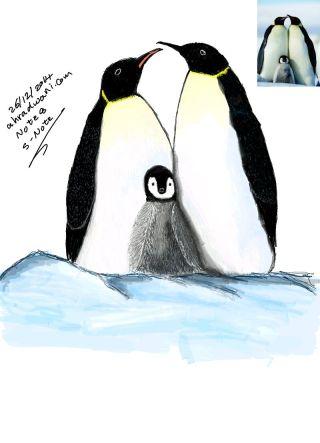 Penguin_20141226__01