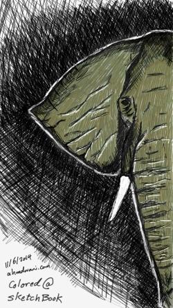 Sketch113182525~01
