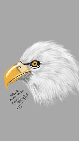Sketch15016531~01
