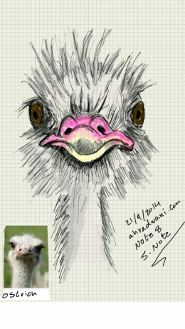 Sketch221103250