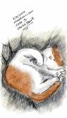Sketch23115415