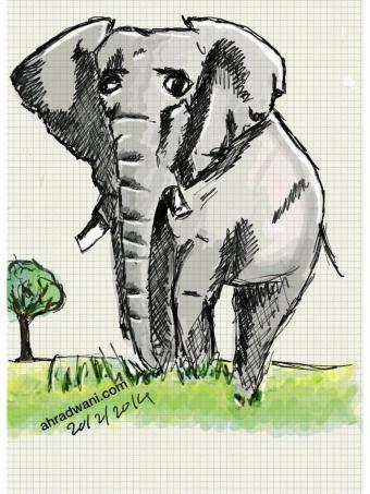sketch_elephant