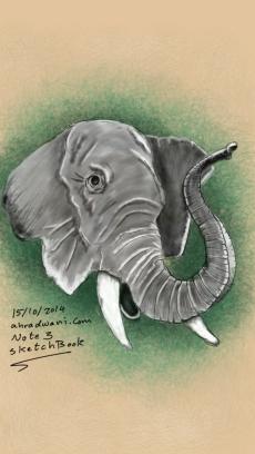 Sketch153105750