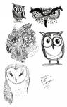 Sketch301151127