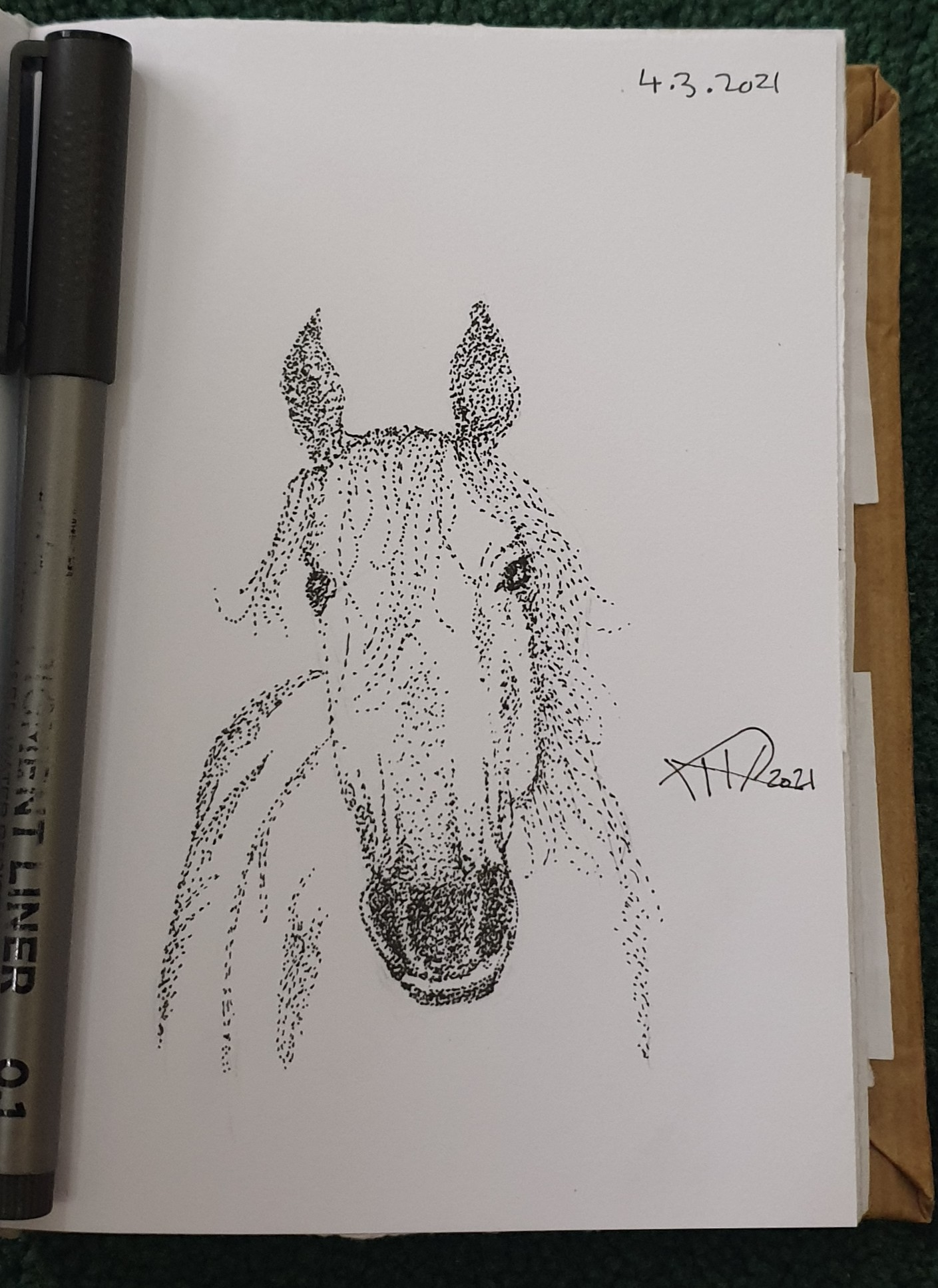 Ali radwani drawing sketch challenge 1hour1sketch horse pen pencil