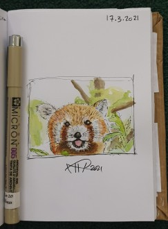 Ali radwani drawing sketch challenge pen pencil Coloring watercolor 1hour1sketch