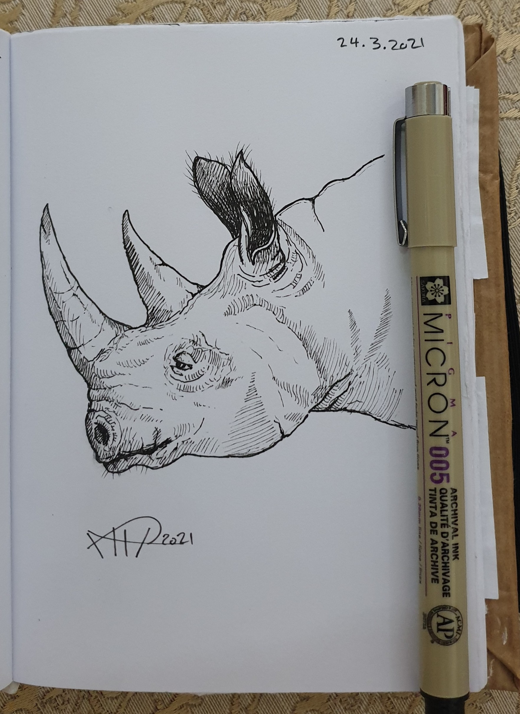 ali radwani sketchbook sketch rhion animal pencil black ink pen