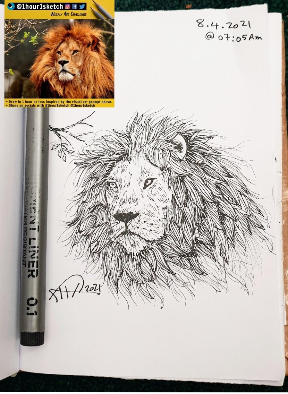 ali radwani sketchbook sketch lion face pencil black pen