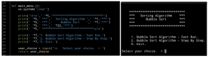 python code bubble sorting algorithm project by Ali Radwani doha qatar