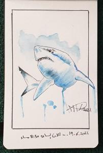 Ali radwani drawing sketch shark watercolor sketches sketchbook