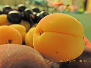 ali nikon s9900 macro shot fruit